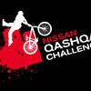 Zum News-Artikel Nissan Qashqai Challenge 2008