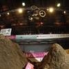 Zum News-Artikel T-Mobile Extreme Playgrounds: Fotos und Videos