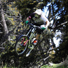 Zum News-Artikel Bikepark Tirol - Tirols erster Bikepark kommt
