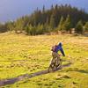 Zum News-Artikel Schwazer Downhill Woche Ende September