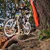 Zum News-Artikel Bikepark-Leogang: Umbauten auf der Weltcup-Downhill-Strecke