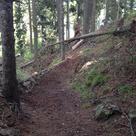 Haideralm Reschenpass Trail-Bau